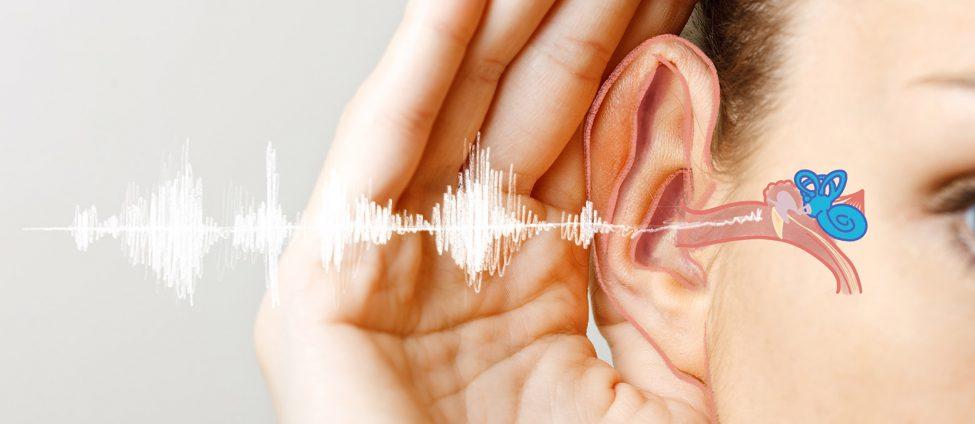 آنچه درمورد افت شنوایی لازم است تا بدانید